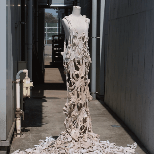 gunte-dress